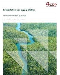 Cadenas de suministro libres de deforestación :