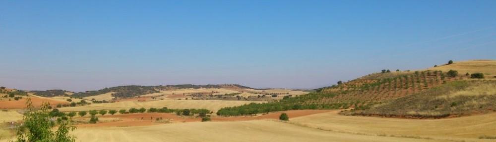 El Fondo de Desarrollo Territorial y Rural para Municipios y Comarcas de Aragón impulsa el mundo rural con 20 M€