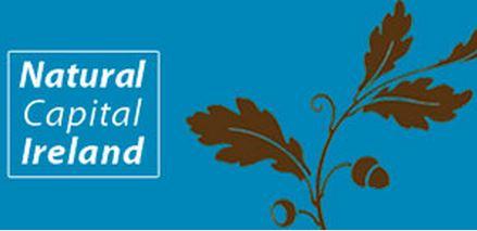 Un centenar de expertos del mundo empresarial, académico, inversores y representantes de organizaciones conservacionistas no gubernamentales,  agencias estatales y propietarios de tierras participaron en la Conferencia sobre Capital Natural de Irlanda