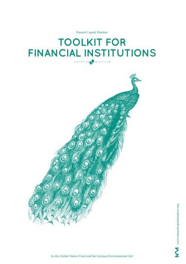 Recomendaciones sobre cómo pueden participar las entidades financieras en el desarrollo de iniciativas exitosas de compensación a la biodiversidad.