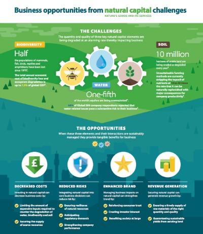 La cantidad y calidad de los tres elementos clave del capital natural, se están degradando a un ritmo alarmante, lo que se traduce en un impacto importante en los negocios: el agua, la biodiversidad y el suelo.