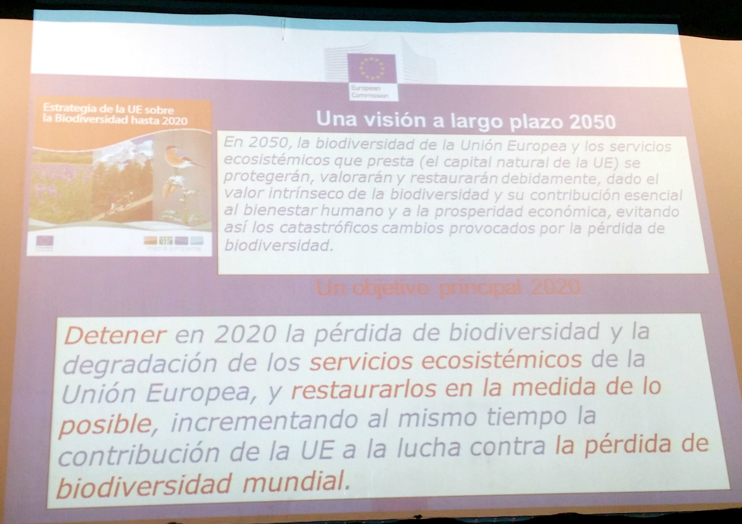 Entre las metas prioritarias de la Estrategia Europea de Biodiversidad para 2020, se cuenta la puesta en práctica de la legislación sobre naturaleza; mantener y restaurar los ecosistemas; impulsar la agricultura, silvicultura y pesca sostenibles; combatir las especies exóticas invasoras y detener la pérdida global de biodiversidad.