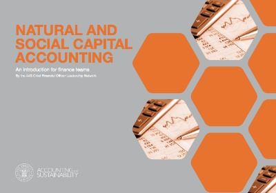 La contabilidad del capital natural y social puede ayudar a las empresas a gestionar más eficazmente los riesgos.