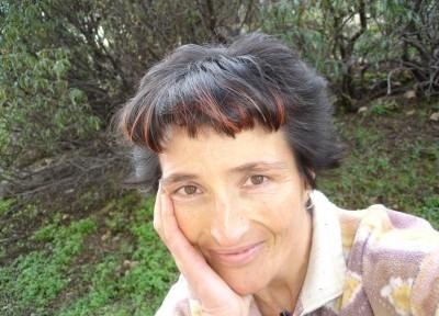 Para Rosa Fernández-Arroyo, «la biodiversidad y el desarrollo urbanístico en las montañas pueden ser compatibles siempre que sea a escala moderada, en altitudes bajas, con baja ocupación de suelo y con exigentes criterios de sostenibilidad y evitación de irreversibilidades»..