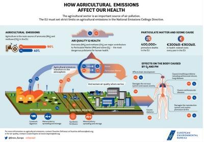 El sector agrícola es la principal fuente de emisiones de amoníaco y metano en la UE a través de la digestión del ganado, el estiércol y la difusión y almacenamiento de purines, así como de fertilizantes sintéticos.