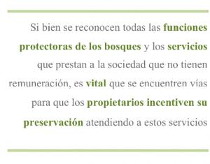 Si bien se reconocen todas las funciones protectoras de los bosques y los servicios que prestan a la sociedad que no tienen remuneración, es vital que estos sean valorados económicamente y que se encuentren vías para que los propietarios incentiven su preservación atendiendo a estos servicios