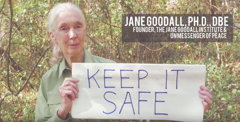Como colofón del vídeo editado cuyas imágenes van acompañadas por las voces de los 16 artistas que han colaborado en el tema, la inimitable Jane Goodall aparece, al igual que lo hacen otros ciudadanos anónimos en escenas anteriores, sujetando un cartel en el que se lee «mantenla a salvo», en referencia a la Tierra.
