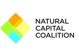 La Coalición del Capital Natural (Natural Capital Coalition, NCC) ha iniciado la fase piloto del Protocolo del Capital Natural (Natural Capital Protocol, NCP), en la que participan 40 empresas líderes que serán las primeras en poner a prueba el nuevo proyecto desarrollado por la coalición.