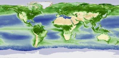 Los técnicos de la NASA han monitorizado con la ayuda de satélites el ciclo anual de la vida vegetal en la tierra y en el agua y nos lo muestran a través de un vídeo que nos permite contemplar la maravilla de un planeta que respira.