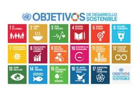 Los indicadores globales están destinados al facilitar el seguimiento y revisión de la Agenda 2030 a escala mundial y no son necesariamente aplicables a todos los contextos nacionales.