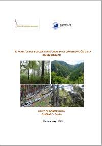 El papel de los bosques maduros en la conservación de la biodiversidad