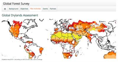 Inventario Forestal Mundial
