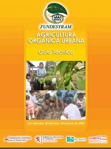 La Guía técnica de la agricultura urbana presenta los principales beneficios que tanto los productores como sus familias pueden obtener al poner en práctica esta actividad.