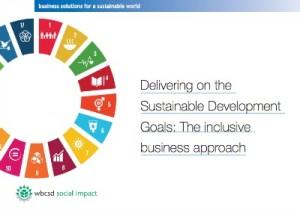 El enfoque inclusivo busca alternativas empresariales respetuosas con el medioambiente, sostenibles, rentables e innovadoras donde se conjuga la conservación de la calidad con el suministro de servicios que satisfacen las necesidades básicas (acceso a comida, agua y salud, entre otras).