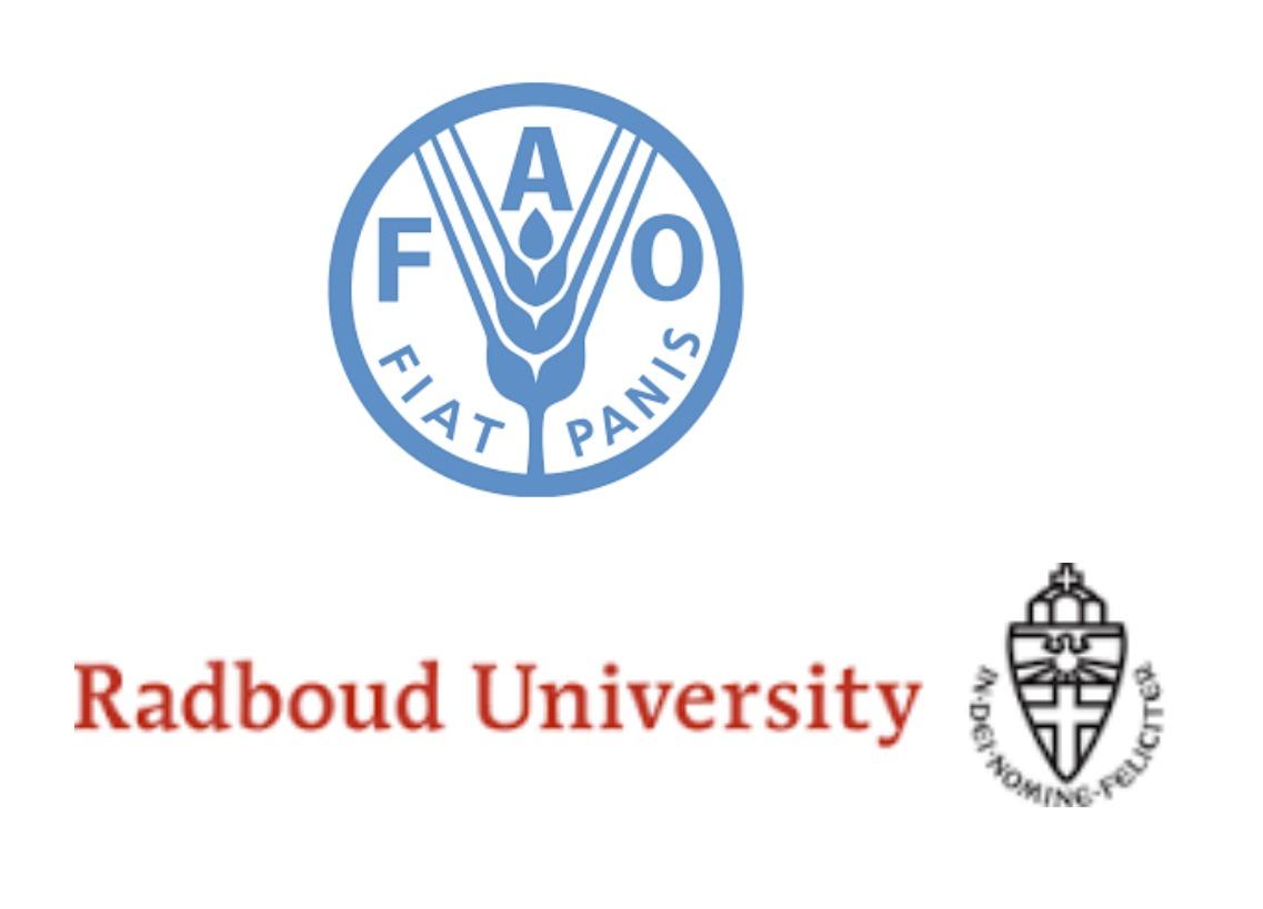 Desde la FAO buscan a un consultor para desarrollar la estrategia regional y el plan de acción sobre bosques y restauración forestal.