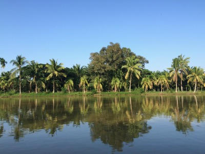 Una alianza global coordinada por la Universidad de Bonn, la Secretaría de la Convención Ramsar, y Wetlands Internacional ha presentado recientemente a la junta de gobierno del Grupo de Observaciones de la Tierra (GOT o Group of Earth Observations, GEO) la propuesta de creación de la iniciativa GEO-Wetlands (GEO-Humedales), en el marco del programa de trabajo 2017-2019 de GEO).