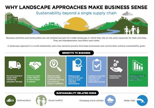La deforestación, la explotación de los recursos naturales y la contaminación del agua dulce son desafíos materiales para muchas empresas. Estos retos solo pueden resolverse a escala a través de enfoques de paisaje colaborativos e integrados.