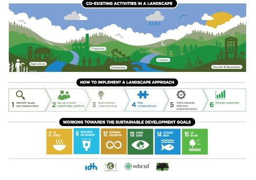Los beneficios para las compañías que se derivan de la apuesta por el enfoque de paisaje son, entre otros, asegurar el suministro a largo plazo mientras se mantienen los servicios de los ecosistemas.