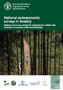 La publicación ha surgido con el propósito de facilitar la realización de investigaciones forestales sistemáticas mediante la prestación de orientación técnica sobre la recopilación de datos.