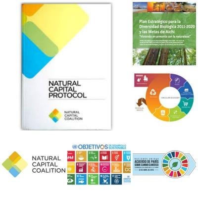 En el marco de los marcos políticos surgidos bajo el Acuerdo de París de 2015, los Objetivos del Desarrollo Sostenible (ODS) de las Naciones Unidas, la Estrategia sobre Biodiversidad y sus metas para 2020, y el Plan de Acción de la Unión Europea en materia de Economía Circular, los firmantes del Acuerdo de la Haya sobre el Capital Natural aspiran a contribuir al desarrollo de los estándares, instrumentos y herramientas adecuadas para garantizar un uso sostenible y transparente del capital natural, basándose en el Protocolo del Capital Natural.