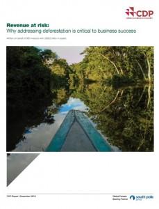 Para asegurar un crecimiento futuro sostenible, las empresas deben abordar la gestión del riesgo de deforestación en sus consejos de dirección e incorporarla en sus estrategias de negocio.