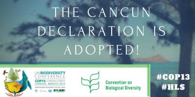 La Declaración de Cancún defiende que «la biodiversidad ofrece soluciones para el desarrollo actual y los retos sociales»; «la Agenda para el Desarrollo Sostenible de 2030 y sus Objetivos de Desarrollo Sostenible (SDG) ofrecen nuevas oportunidades para abordar los desafíos del desarrollo de una manera transformadora»; y que «la aplicación del Acuerdo de París sobre el cambio climático puede y debe contribuir a la aplicación de los objetivos del CDB y viceversa».
