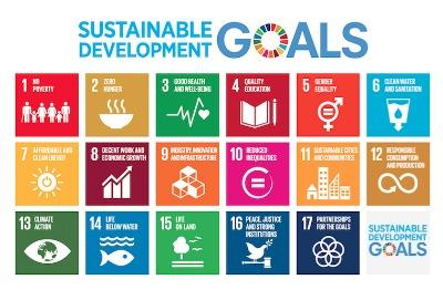 Durante el primer año de implementación de los ODS, las agencias de la ONU con diferentes mandatos en materia de derechos humanos, trabajo, desarrollo industrial, alimentación y agricultura, energía —e incluso telecomunicaciones— han comenzado a hablar un lenguaje más común.