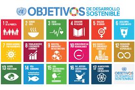 El documento muestra una visión general acerca de la situación de las políticas de la UE y sus Estados miembros en áreas clave para el desarrollo sostenible, por lo que resulta de especial utilidad para la toma de decisiones mejor informadas a la hora de avanzar hacia una Unión Europea sostenible.