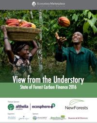 Los datos de Ecosystem Marketplace indican que los proyectos de carbono forestal protegen 28 millones hectáreas de bosque. Históricamente, las ventas de reducciones de emisiones han tenido lugar sobre todo en mercados «voluntarios», pero también en los mercados de «cumplimiento», y cada vez más en «pagos por desempeño» que no son de mercado.
