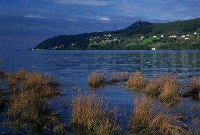 Las 53 nuevas reservas se suman a las 82 declaradas en noviembre de 2015 en el ámbito de 10 demarcaciones hidrográficas, con lo que ya son 135 las reservas naturales fluviales de España. Entre todas, suman una longitud total de 2684 kilómetros.