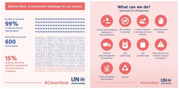 Cada año, más de ocho millones de toneladas de plásticos terminan en los océanos, lo que se traduce en graves estragos en la fauna marina, la pesca y el turismo y en un coste mínimo de 8000 millones de dólares en daños a los ecosistemas marinos.
