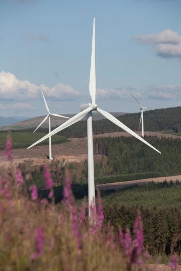 Las emisiones de bonos verdes son un ejemplo del propósito de la eléctrica española de reverdecer una parte importante de su pasivo, así como de impulsar la transición hacia un mix energético bajo en carbono.