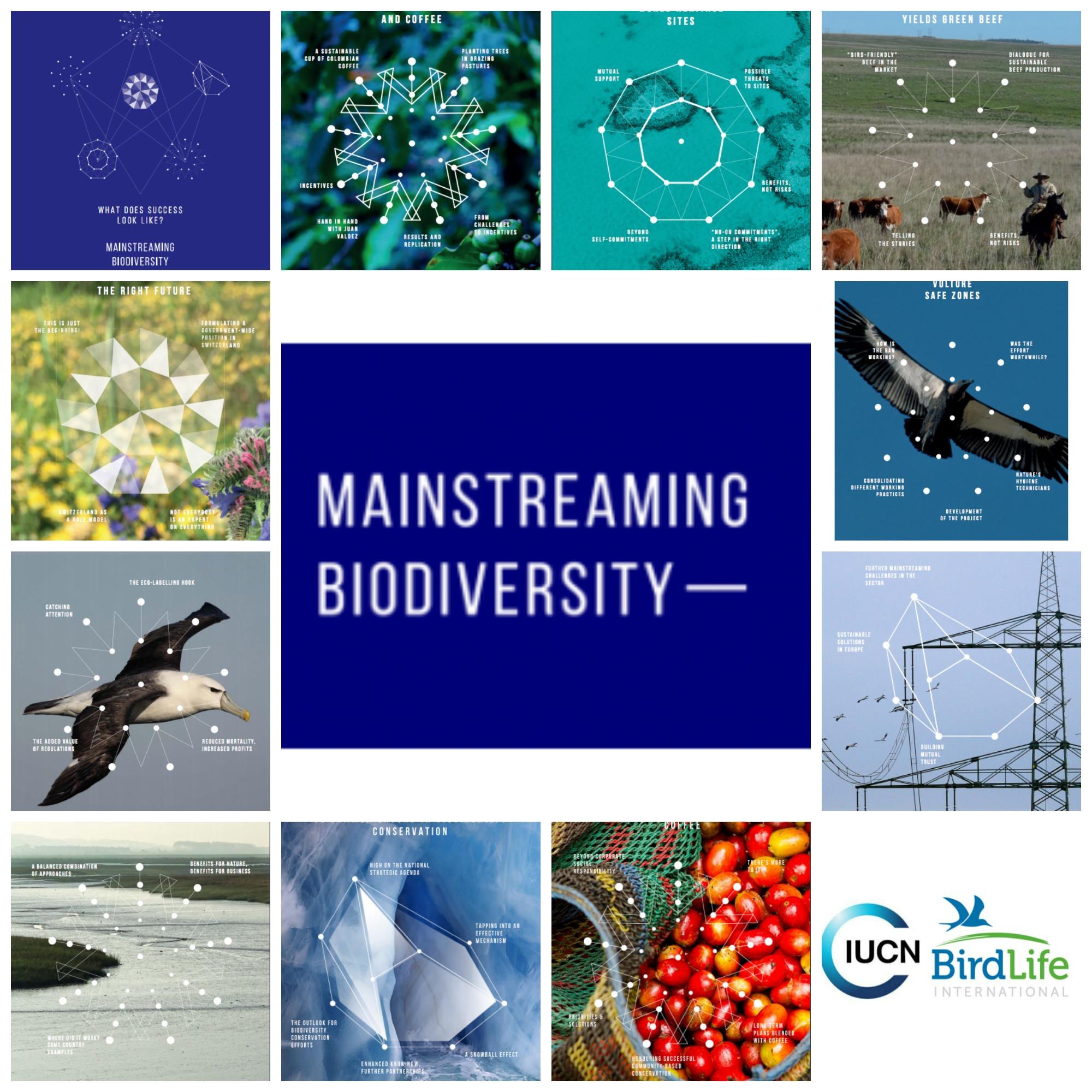 Mainstreaming Biodiversity (Integrando la Biodiversidad) es un proyecto dirigido por la Unión Internacional para la Conservación de la Naturaleza (UICN) y BirdLife International con la finalidad de documentar ejemplos exitosos sobre la integración de la biodiversidad en las distintas estrategias.