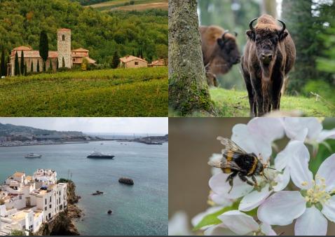 Entre los desafíos que enfrenta la naturaleza en Europa, se cuentan: encontrar una agenda compartida para los espacios naturales, hacer que la naturaleza sea más relevante para la sostenibilidad de los sectores económicos y fortalecer la conexión entre las personas y la naturaleza.