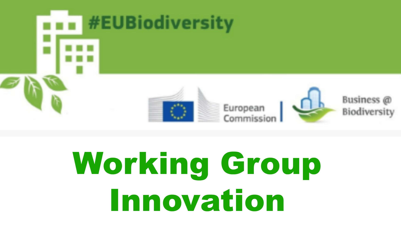 La innovación está siendo objeto de mayores apoyos y recursos a escala de la Unión Europea, en particular gracias al trabajo desarrollado en el marco del Consejo Europeo de Innovación. Formar parte del Grupo de Trabajo sobre Innovación te permitirá construir redes, conocimientos y oportunidades de financiación en un espacio de innovación excepcional.