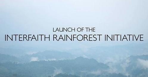 Interfaith Rainforest Initiative es una apuesta que persigue forjar un plan de acción conjunto dirigido a proteger, restaurar y realizar una gestión sostenible de las selvas tropicales en todo el planeta.