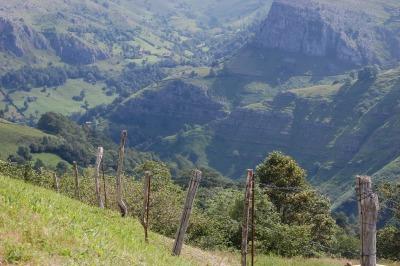 El cambio del Programa de Desarrollo Rural de Navarra 2014-2020 destina más fondos a las líneas agroambientales, agricultura ecológica, zonas desfavorecidas y grupos de acción local.