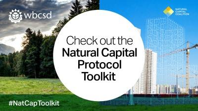 El Kit de Herramientas del Protocolo del Capital Natural es una base de datos de libre acceso online e interactiva, con más de 50 herramientas que las empresas pueden utilizar para explorar, experimentar y realizar evaluaciones del capital natural en sus operaciones.