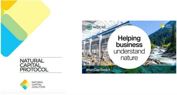 El Kit de Herramientas del Protocolo del Capital Natural es un paso importante en el camino hacia la comprensión del verdadero coste y el verdadero valor de los impactos y dependencias que la empresa tiene de la naturaleza.