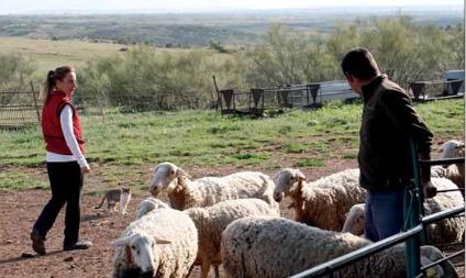 Anuario de la agricultura familiar en España 2017