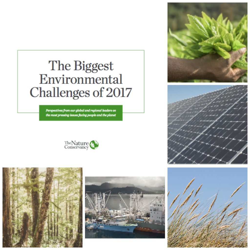 Maximizar el papel de la naturaleza como solución climática y mejorar la gestión de las pesquerías a escala global, entre los principales retos ambientales para 2017.
