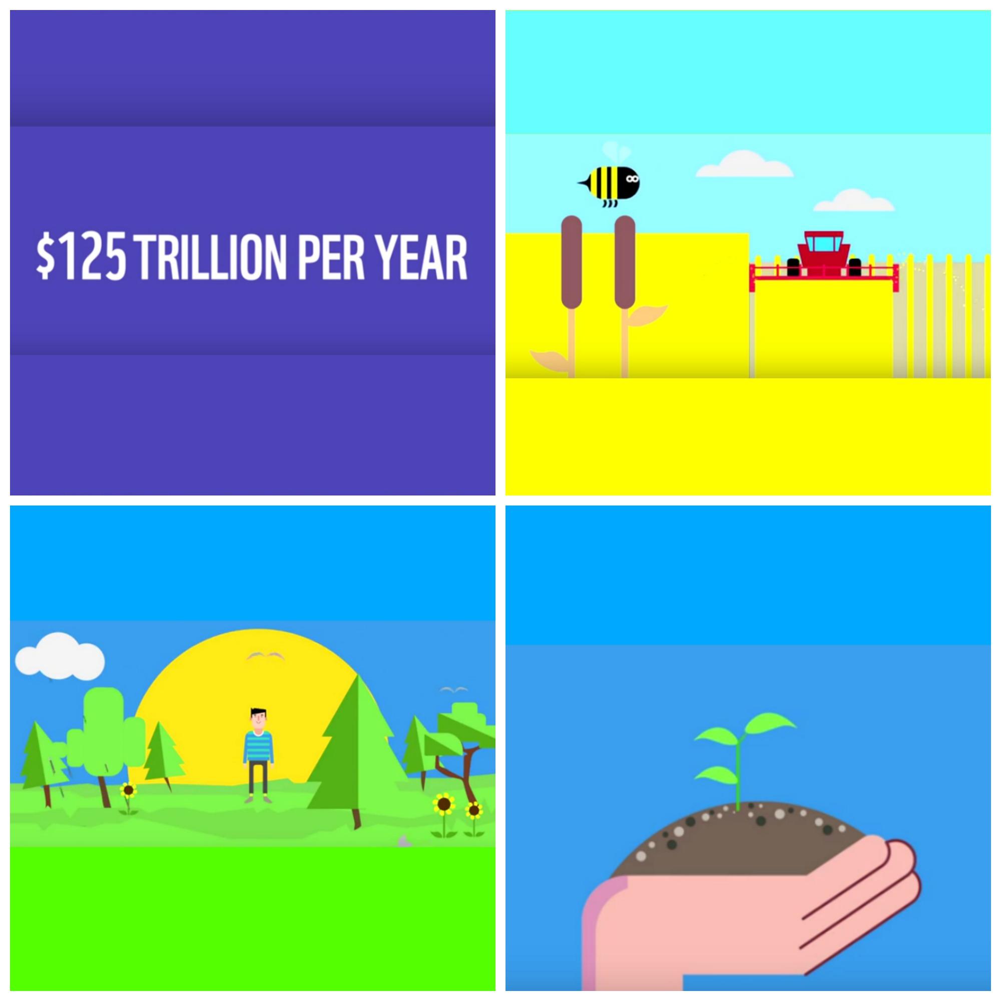 Los bienes y servicios que anualmente nos proveen la biodiversidad y sus servicios ecosistémicos tienen un valor de 125 millones de dólares.