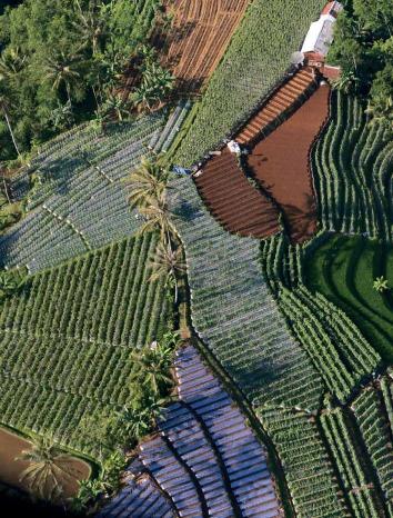 El consumo de las reservas naturales de la tierra se ha duplicado en los últimos 30 años, con un tercio de la tierra del planeta gravemente degradado en la actualidad.