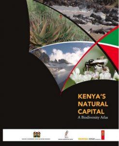 Este informe es un intento de presentar de forma visual la extensión, estado, amenazas, tendencias, intervenciones y potenciales oportunidades del uso sostenible de la biodiversidad keniata.