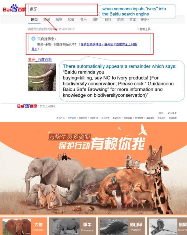 En los últimos años, los responsables de Baidu han dedicado especial interés a la protección de las especies en peligro, por lo que han optimizado los resultados de búsqueda para palabras clave relacionadas con la biodiversidad.
