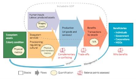 Enfoque novedoso de la contabilidad de los ecosistemas, que vincula los bienes y servicios ecosistémicos espacialmente cuantificados con sus contribuciones y beneficios para las industrias.