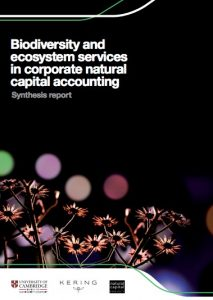 Biodiversity and ecosystem services in natural capital corporate accounting.
