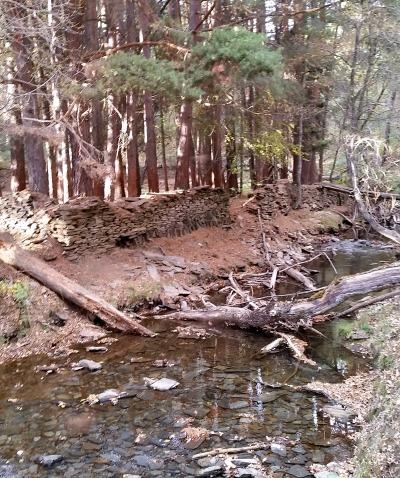 La la protección de cuencas fluviales en las circunstancias adecuadas puede considerarse como una doble inversión en salud pública.