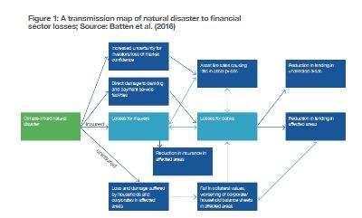 El Grupo de Estudio sobre Finanzas Verdes del G20 solicitó al Centro para las Finanzas Sostenibles de Cambridge la realización de un inventario global de las herramientas y técnicas que las instituciones financieras están desarrollando para analizar riesgos ambientales.
