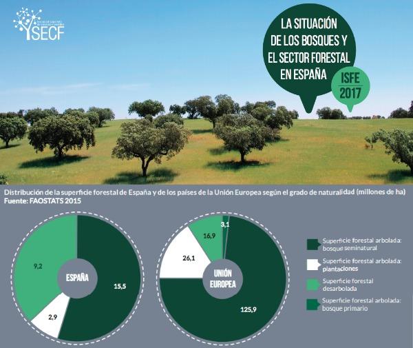 Un 27 % de la superficie forestal se encuentra amparada por figuras de protección, un 16,4 % contaba con un plan de ordenación y un 7,2 % disponía de certificado de gestión forestal sostenible en 2015.